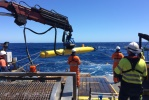 Neptune Secures Deep Water AUV Contract for Woodside
