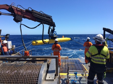 AUV Survey